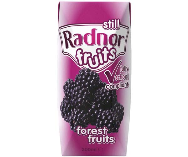 Radnor Fruits Still - Tetra - Forest Fruits - 24x200ml