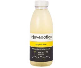 Rejuvenation Water Bottle - Ginger & Lime - 12x500ml