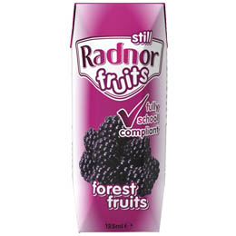 Radnor Fruits 125ml - Forest Fruits - 30x125ml