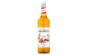 Monin - Plastic - Gingerbread Syrup - 1x1L